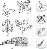 Leaf Drawing Set