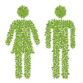 green plant male and female icon