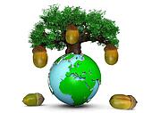 Oak tree with acorns on top of the Earth