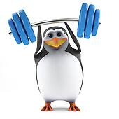 3d Penguin weightlifter