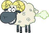 Smiling Black Head Ram Sheep