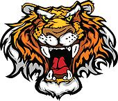 Cartoon Tiger Mascot Head Vector Il