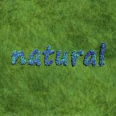 natural create by blue flowers with grass