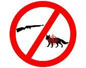 Do not shoot fox
