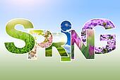 Spring word collage made of different photos