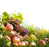 basket of apples and grapes on the grass