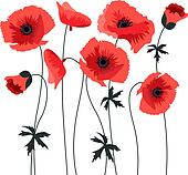 Poppy Clip Art - Royalty Free - GoGraph