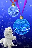 The white cat touches a paw of the New Year's ball