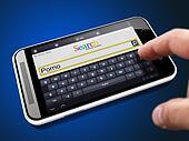 Porno in Search String on Smartphone.