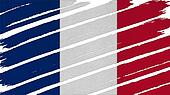 France Flag tinted texture