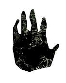 Paw print of  gorilla hand