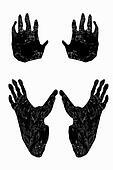 Paw print of gorilla