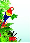 Macaw bird in the tropical forest
