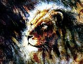 lion head with a majesticaly peaceful expression, profile
