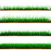 Samples of green color grass