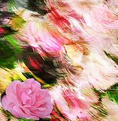 Floral greeting card with pink rose on grunge stained colorful background