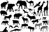 Collection of the African animals