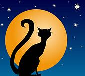 Black Cat and Full Moon