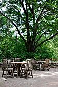 Tables under Big Tree