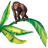 Baby Monkey Gorilla on palm tree