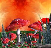 Mushrooms magic place