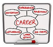 Career Diagram Dry Erase Board How to Succeed in Job
