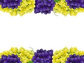 Grape border