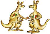 Kangaroos mothers chattering
