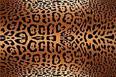 animal skin print