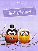 Wedding of owls