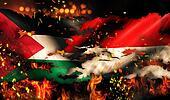 Palestine Indonesia Flag War Torn Fire International Conflict 3D