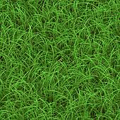 Green Grass Seamless Pattern