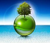 Sphere tree -  ecology concept