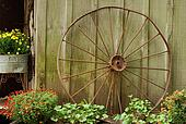 old wagon wheel leaning on barn