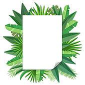 blank paper Tropical leaves