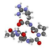 Enterostatin signaling peptide molecule. Reduces food and fat intake. Atoms are represented as spheres with conventional color coding: hydrogen (white), carbon (grey), nitrogen (blue), oxygen (red).