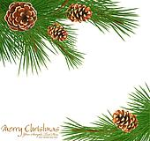 Festive vector background with green spruce and pine cones