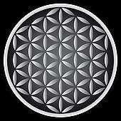 flower of life symbol - illustration