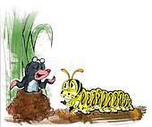 centipede, mole