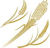 Wheat Elements