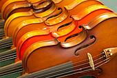 Close up violin