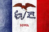 Iowa State Flag painted on leather texture