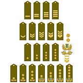 Armed Forces insignia Estonia