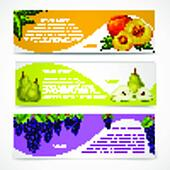 Mixed fruits banners collection