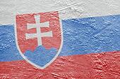 Slovak flag on the ice