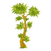 Cartoon Exotic Tree