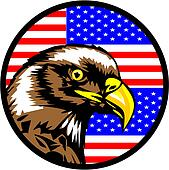 Eagle had in flag of America