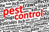 Pest Control For Bugs And Rodents