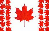 Canadian flag made from maple red leaves. Canada flag concept ma