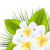 Hawaiian Border Stock Images, Royalty-Free Images &amp- Vectors ...